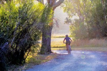 Image of person riding a bicycle through the countryside